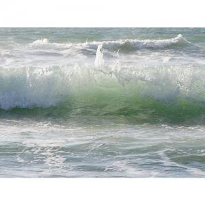 Meereswoge