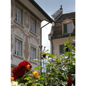 Rosenstadt Bischofszell - Helzer- und Dallerhaus
