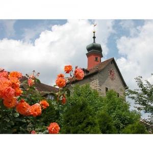 Rosenstadt Bischofszell - Bogenturm