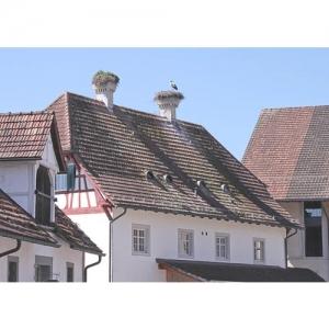 Kartause Ittingen - Verwaltungsgebäude mit Storc..