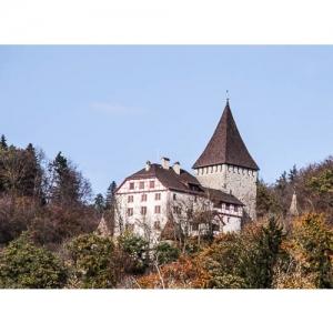 Weinfelden - Schloss