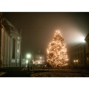 St. Gallen - Weihnachtsbaum auf dem Klosterplatz