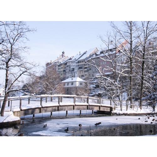 Wil SG  Am Stadtweiher  Winter  LibriVita