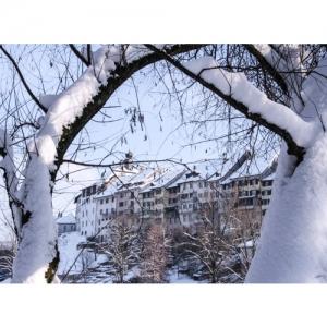 Wil SG - Blick vom Stadtweiher zur Altstadt