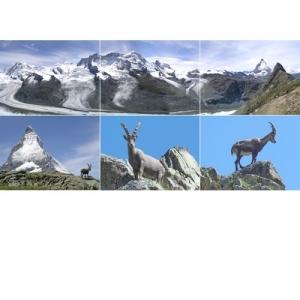 Gletscherlandschaft und Matterhorn VS