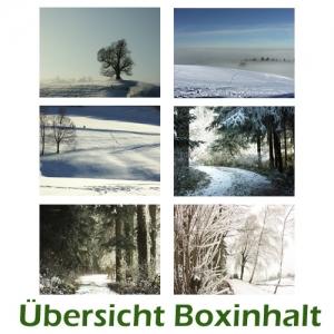 Sechser-Box: Winterlandschaften