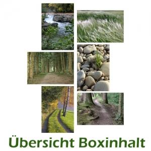 Sechser-Box: Landschaften