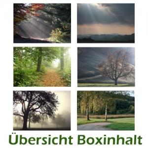 Sechser-Box: Trauer