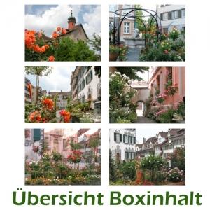 Sechser-Box: Rosenstadt Bischofszell