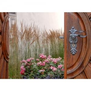 Einblick durchs Tor