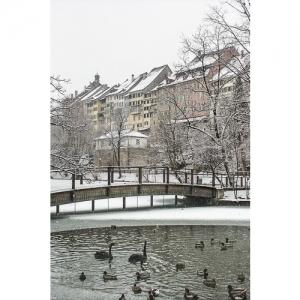 A 0694 Wil SG: Stadtweiher 60x40
