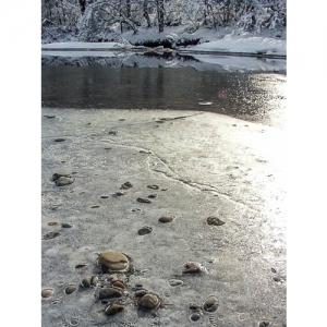 Eisfläche an der Thur