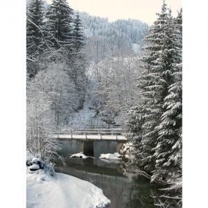 Flussbrücke im Schnee