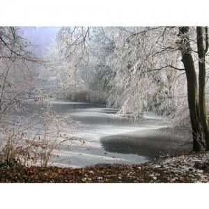 Winterstimmung am Weiher