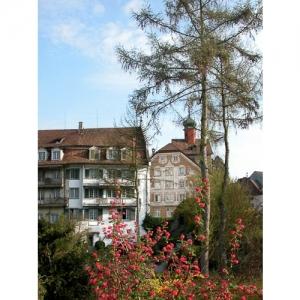 Bischofszell: Blick auf Helzerhaus