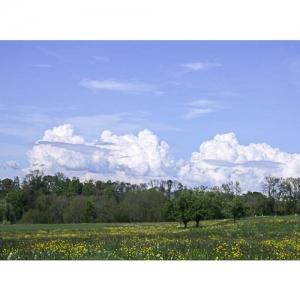 Landschaft - 1176