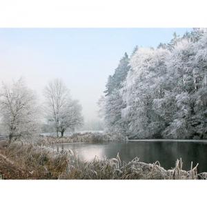 Winter am Weiher - 0592